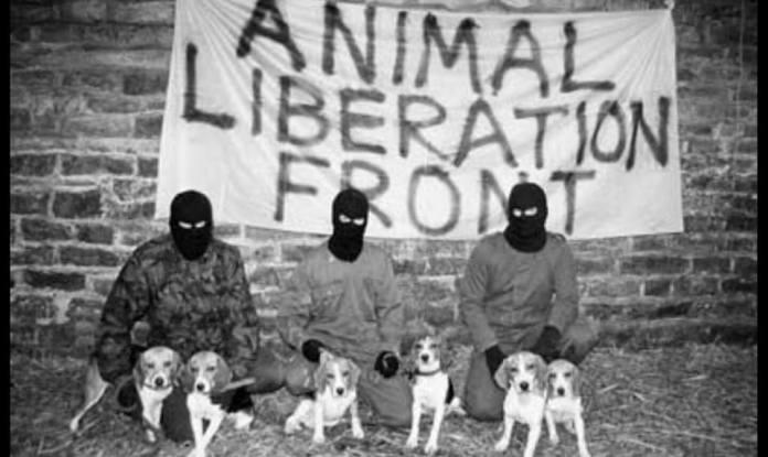 """Los empresarios cárnicos, alarmados por los ataques de """"terrorismo animalista"""""""